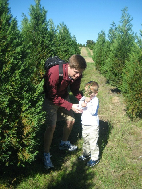 Elgin Christmas Tree Farm.The Search For The Perfect Christmas Tree