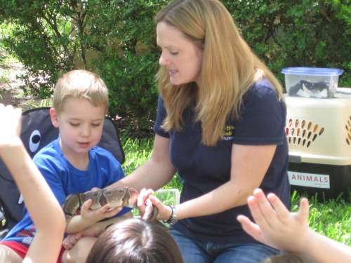 My child had a blast when Courtney of Wild Things Zoofari brought animals over to our house for his last birthday.