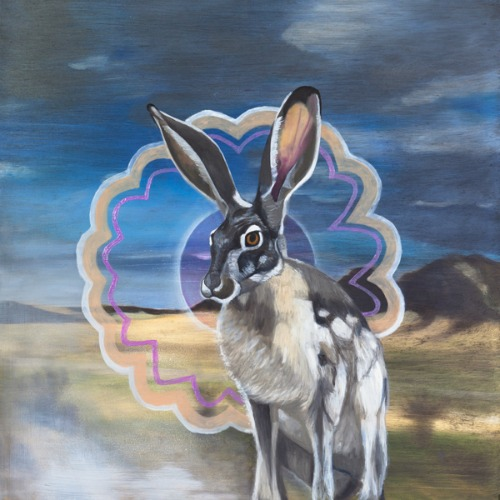Rabbit by Stella Alesi (from the vegetarian series) oil on panel 16x16 inches 2013