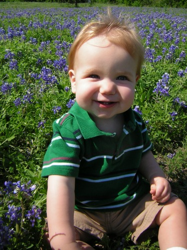 Bluebonnets boy