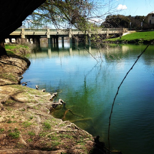 We lucked upon a beautiful day, walking along the Cibolo Creek after lunch in Boerne.