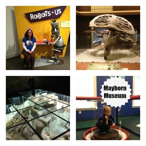 Mayborn Museum