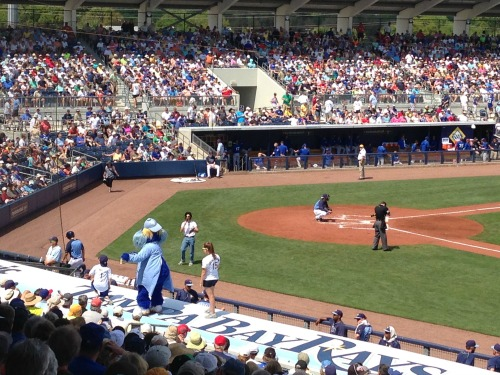Tampa Bay Rays 3