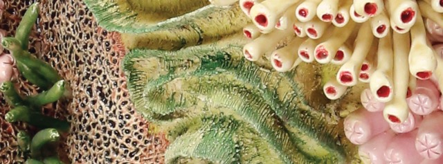 Image: Hope Spots - Coral Triangle by Courtney Mattison (detail), glazed ceramic sculpture
