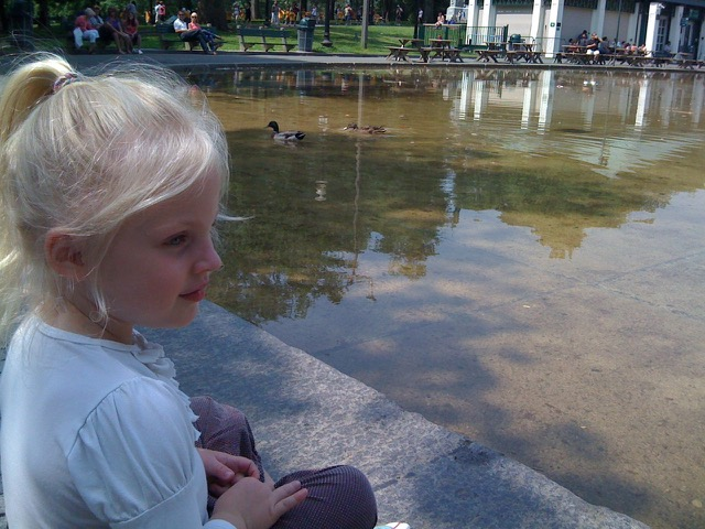 Feeding the ducks in the Frog Pond.