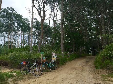 Biking on Polpis Harbor