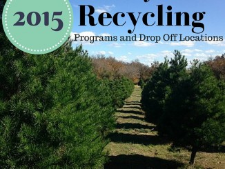 2015 holiday tree