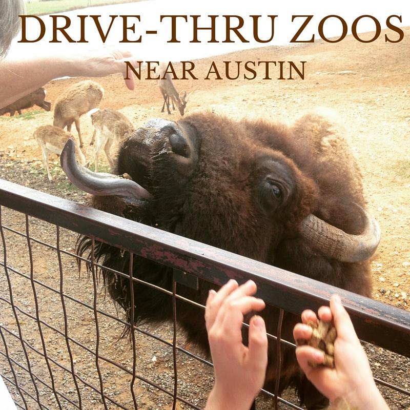DRIVE-THRU ZOOS