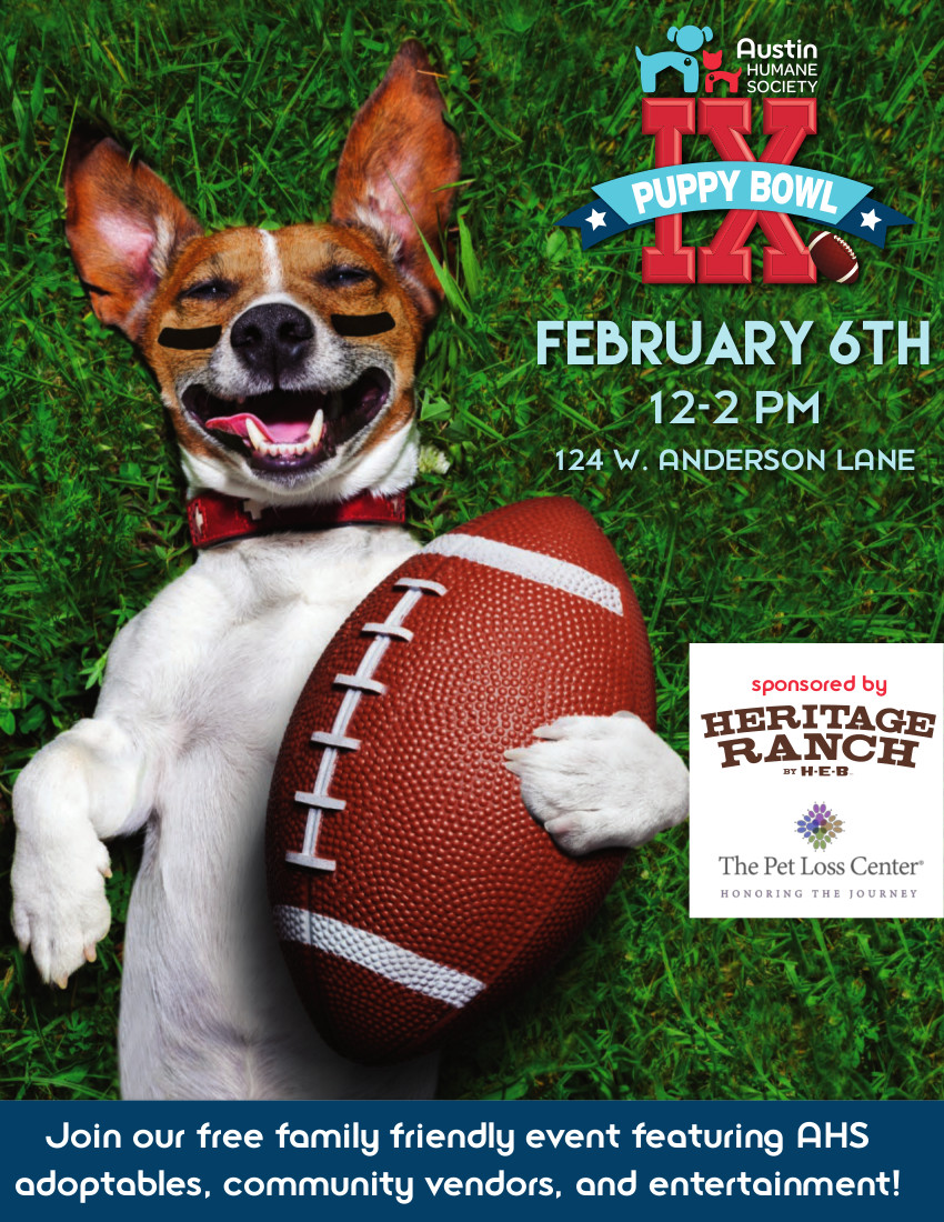 Puppy Bowl Flier 2016