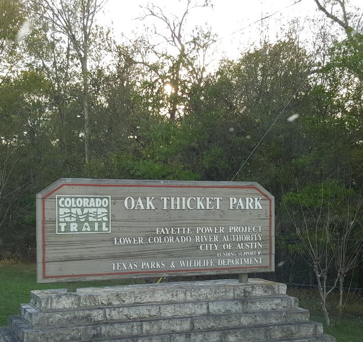 OakThicket