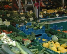 2013 Austin Area Farmer's Markets