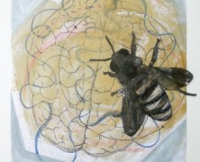 The Buzz Stops Here Exhibit to Benefit SFC's Teaching Apiary