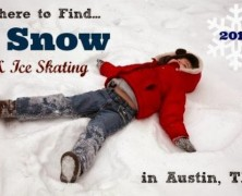 2014 Snow Days and Ice Skating Rinks in Austin