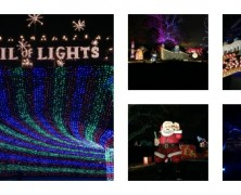 Top Holiday Lights Displays in Austin