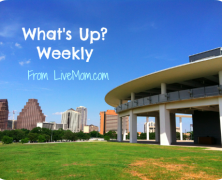 Weekday Events for Austin Families, November 4-8, 2013